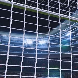 Goal Nets