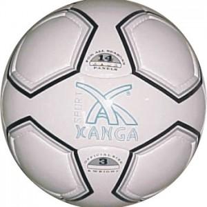 Kanga sport ball